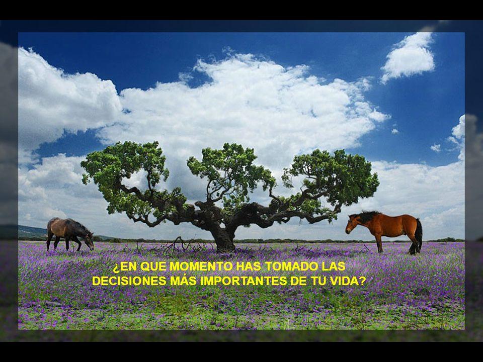 ¿EN QUE MOMENTO HAS TOMADO LAS DECISIONES MÁS IMPORTANTES DE TU VIDA
