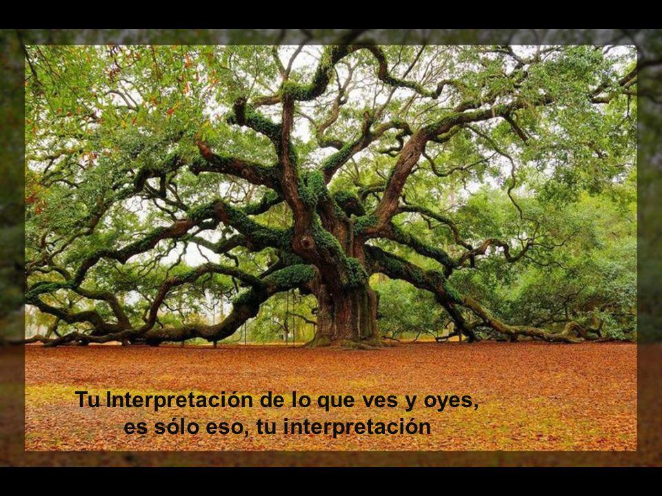 Tu Interpretación de lo que ves y oyes, es sólo eso, tu interpretación