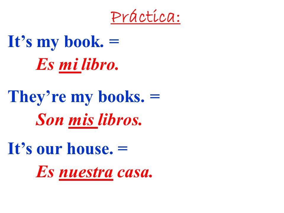 Práctica: It's my book. = Es mi libro. They're my books.