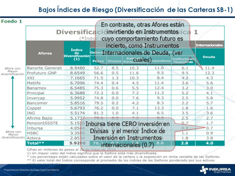 Bajos Índices de Riesgo (Diversificación de las Carteras SB-1)