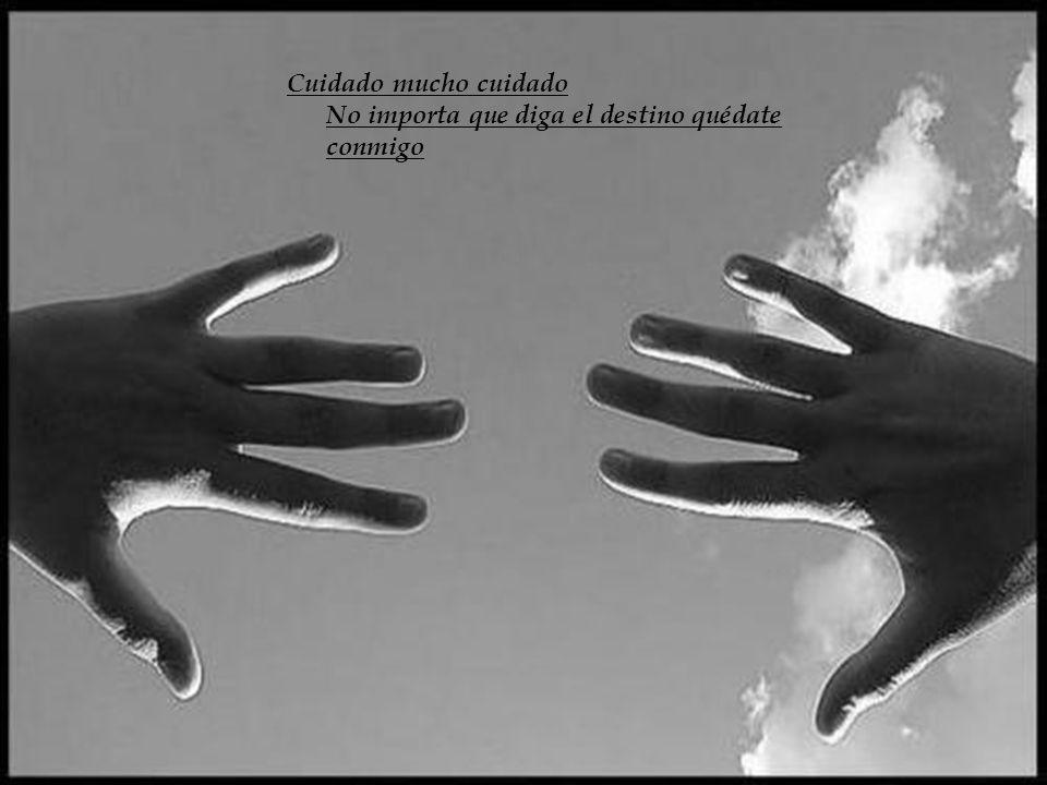 Cuidado mucho cuidado No importa que diga el destino quédate conmigo