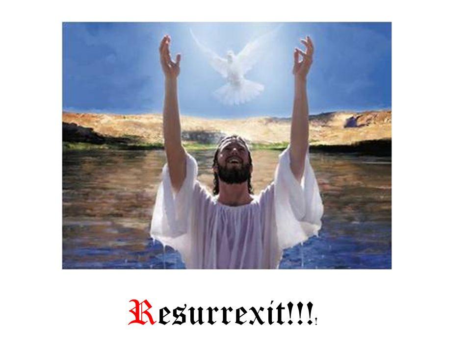Resurrexit!!!!