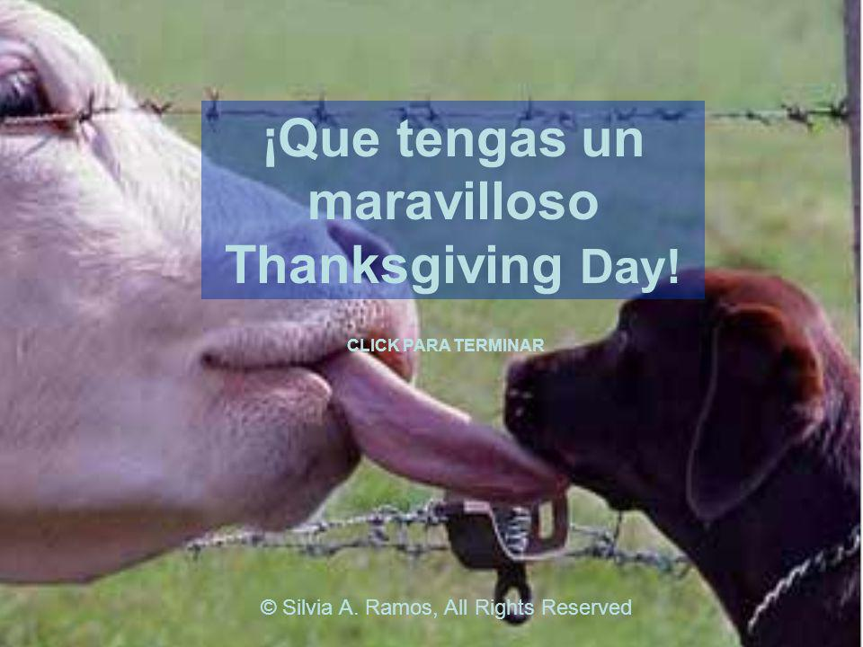 ¡Que tengas un maravilloso Thanksgiving Day!