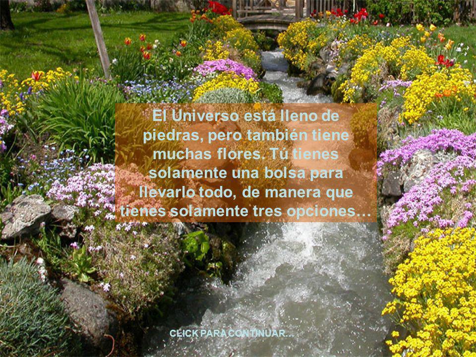 El Universo está lleno de piedras, pero también tiene muchas flores