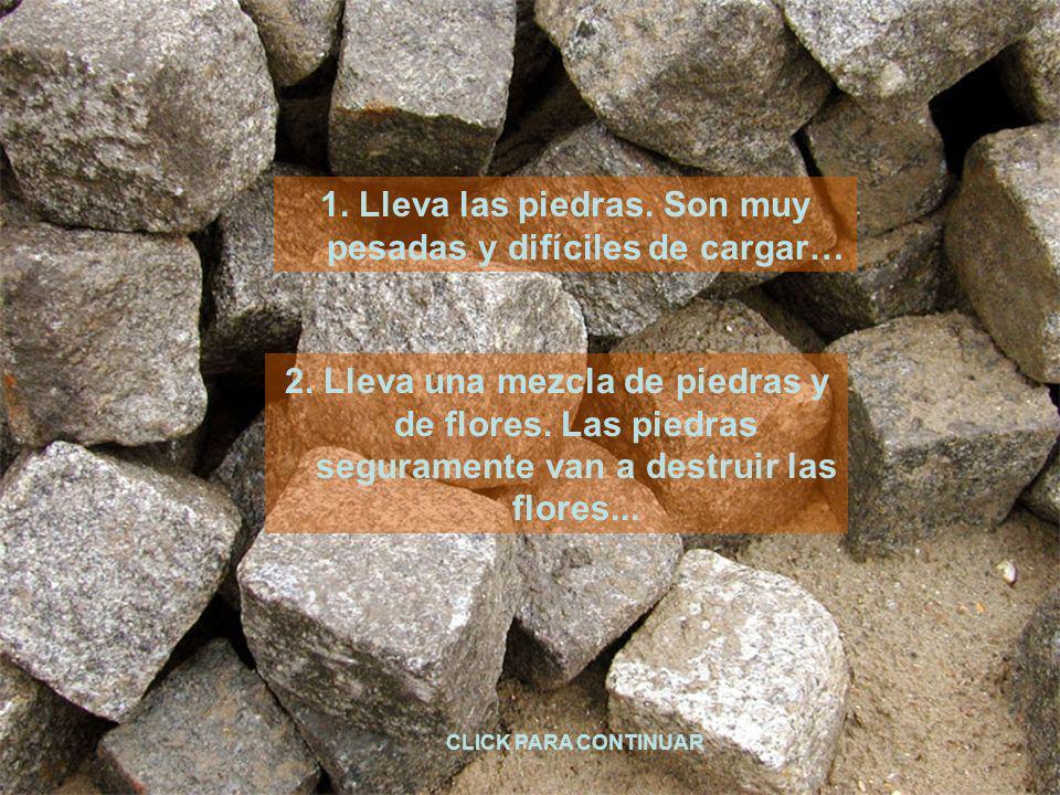 1. Lleva las piedras. Son muy pesadas y difíciles de cargar…