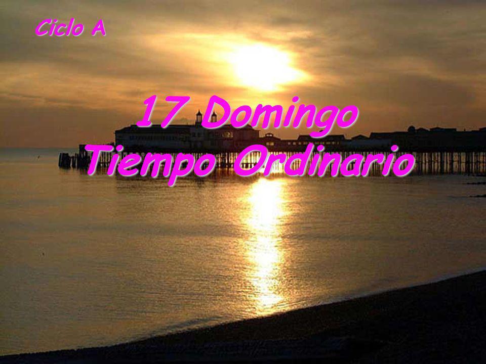 17 Domingo Tiempo Ordinario
