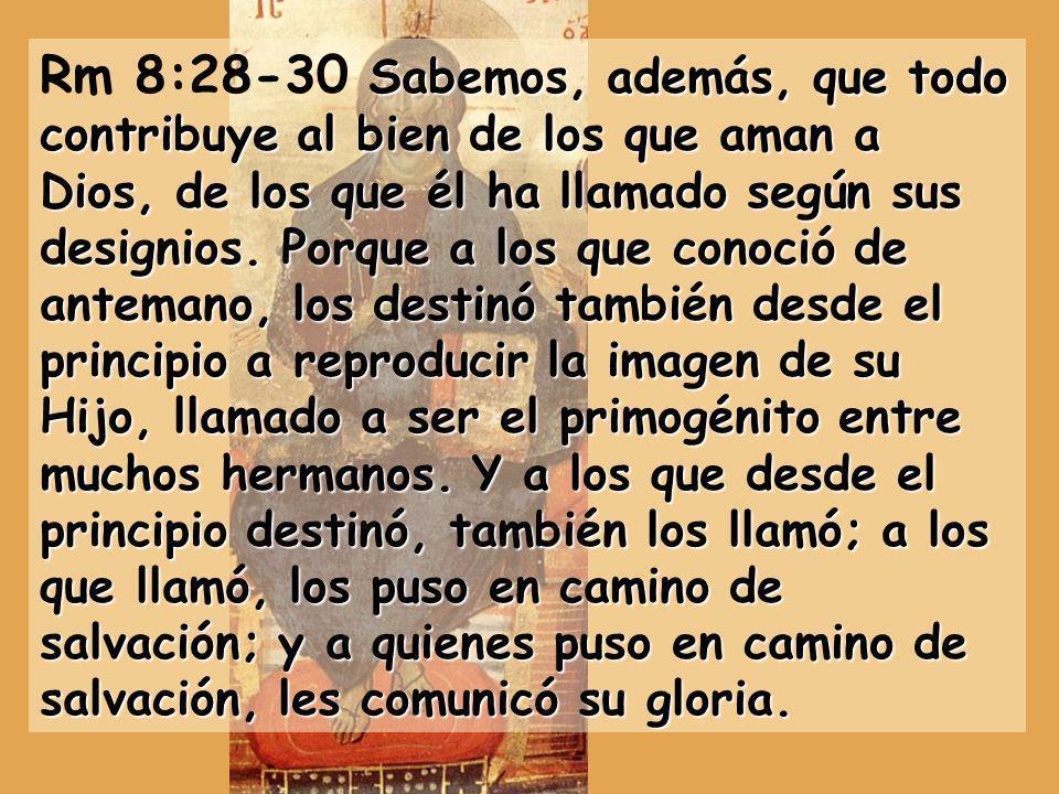 Rm 8:28-30 Sabemos, además, que todo contribuye al bien de los que aman a Dios, de los que él ha llamado según sus designios.