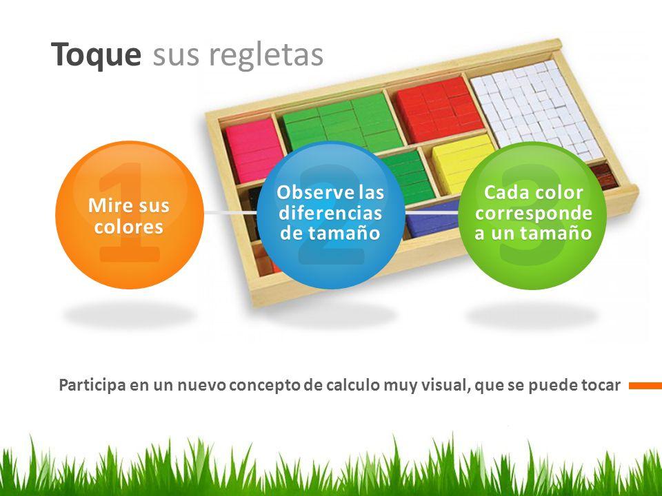 Observe las diferencias de tamaño Cada color corresponde a un tamaño