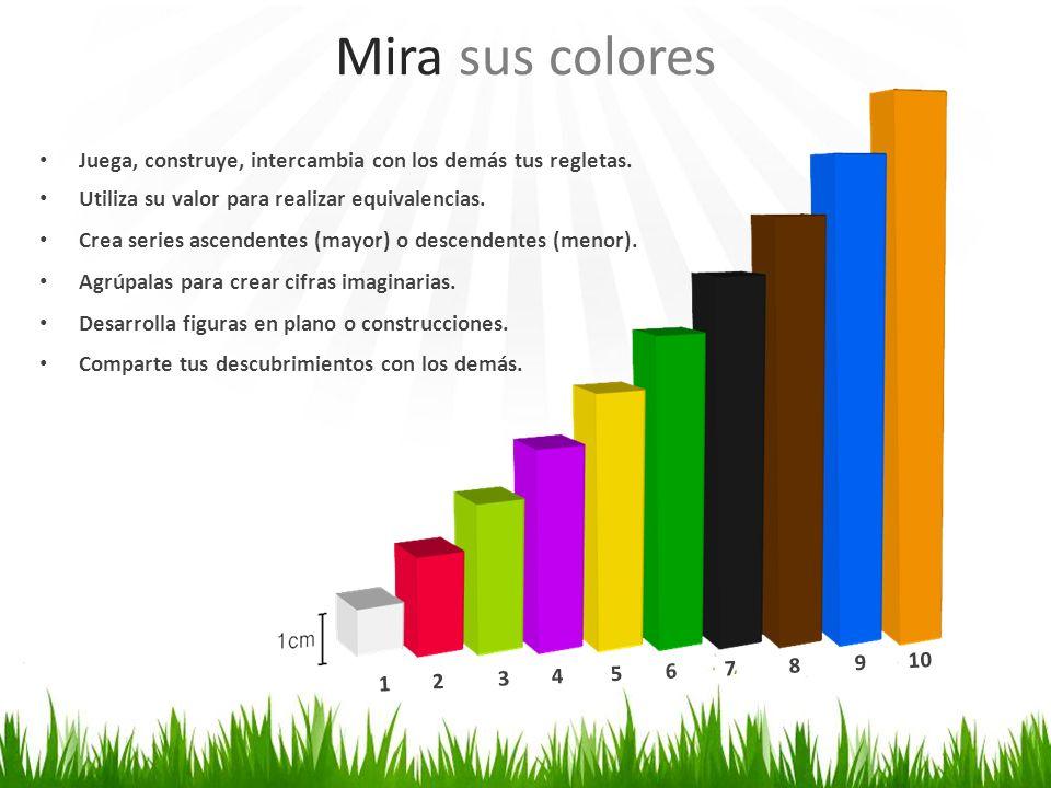 Mira sus colores Juega, construye, intercambia con los demás tus regletas. Utiliza su valor para realizar equivalencias.