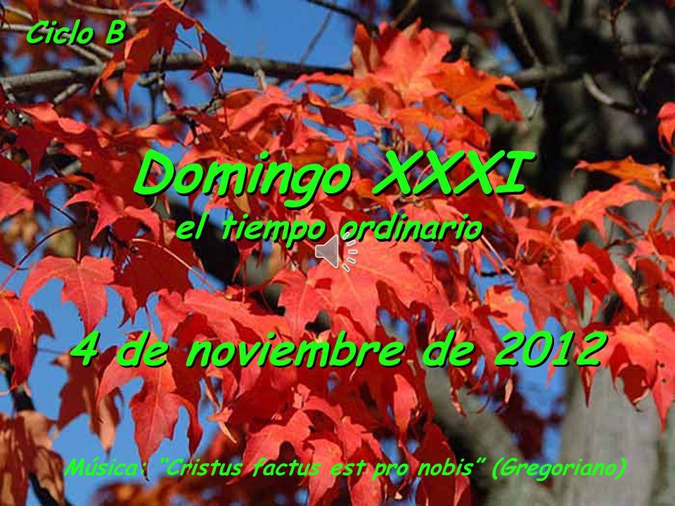 Domingo XXXI 4 de noviembre de 2012 el tiempo ordinario