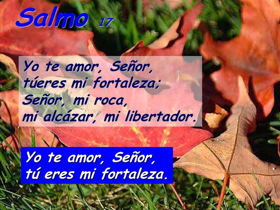 Salmo 17 Yo te amor, Señor, túeres mi fortaleza; Señor, mi roca,