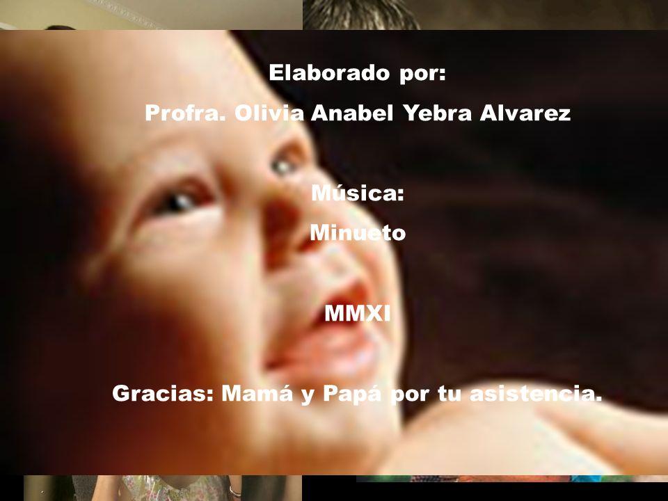 Profra. Olivia Anabel Yebra Alvarez