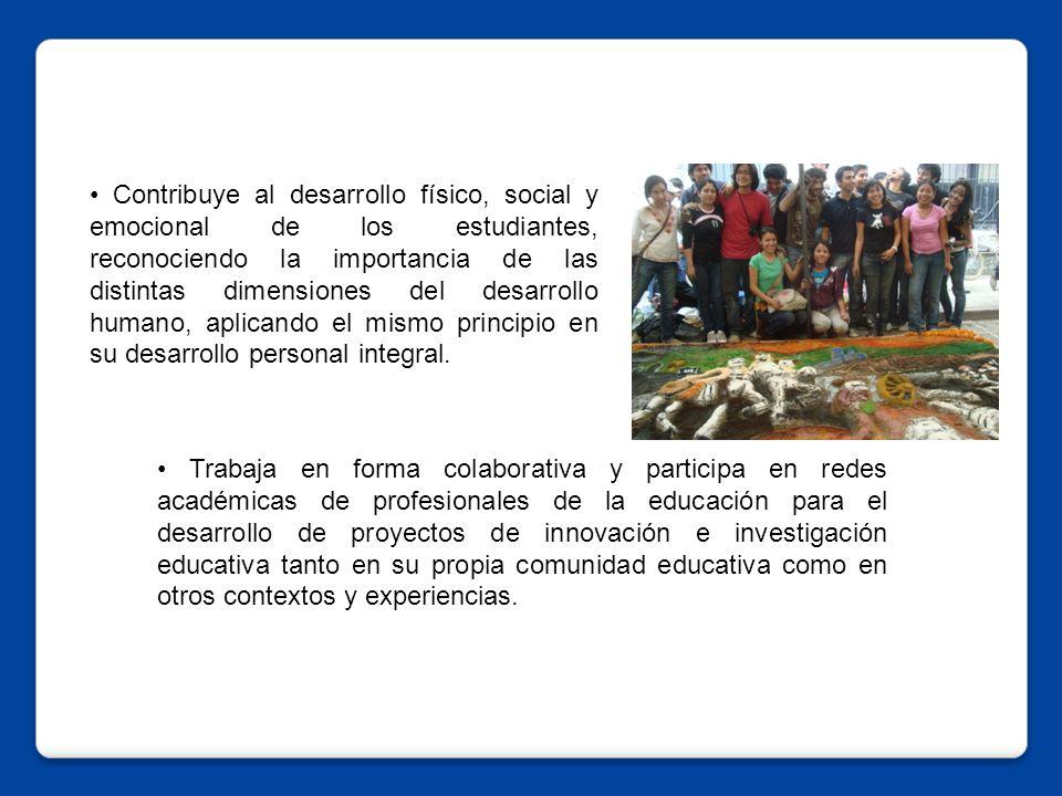 • Contribuye al desarrollo físico, social y emocional de los estudiantes, reconociendo la importancia de las distintas dimensiones del desarrollo humano, aplicando el mismo principio en su desarrollo personal integral.
