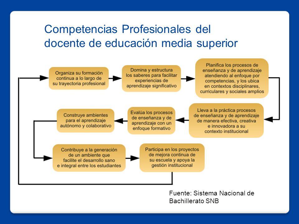 Competencias Profesionales del docente de educación media superior