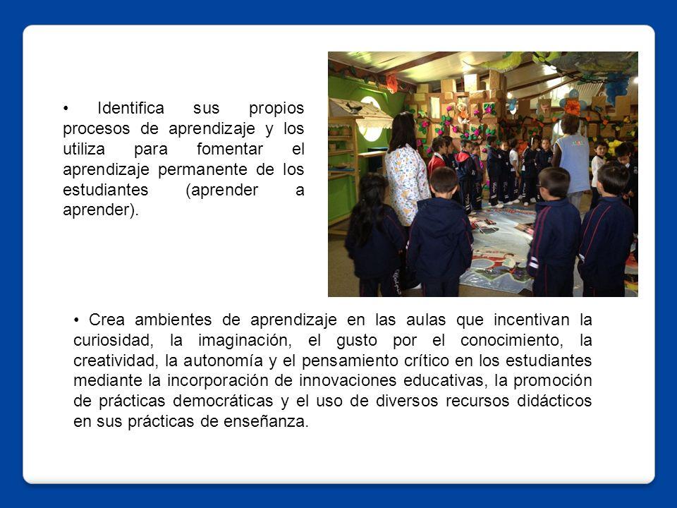 • Identifica sus propios procesos de aprendizaje y los utiliza para fomentar el aprendizaje permanente de los estudiantes (aprender a aprender).