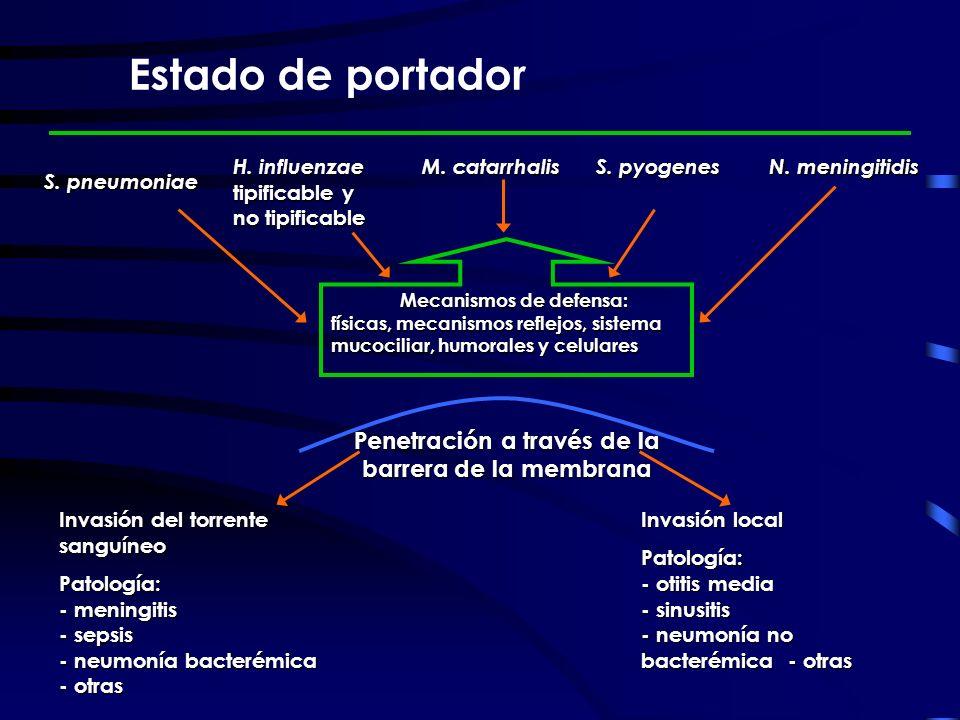 Estado de portador Penetración a través de la barrera de la membrana
