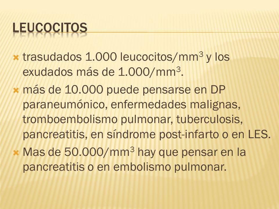 LEUCOCITOS trasudados 1.000 leucocitos/mm3 y los exudados más de 1.000/mm3.