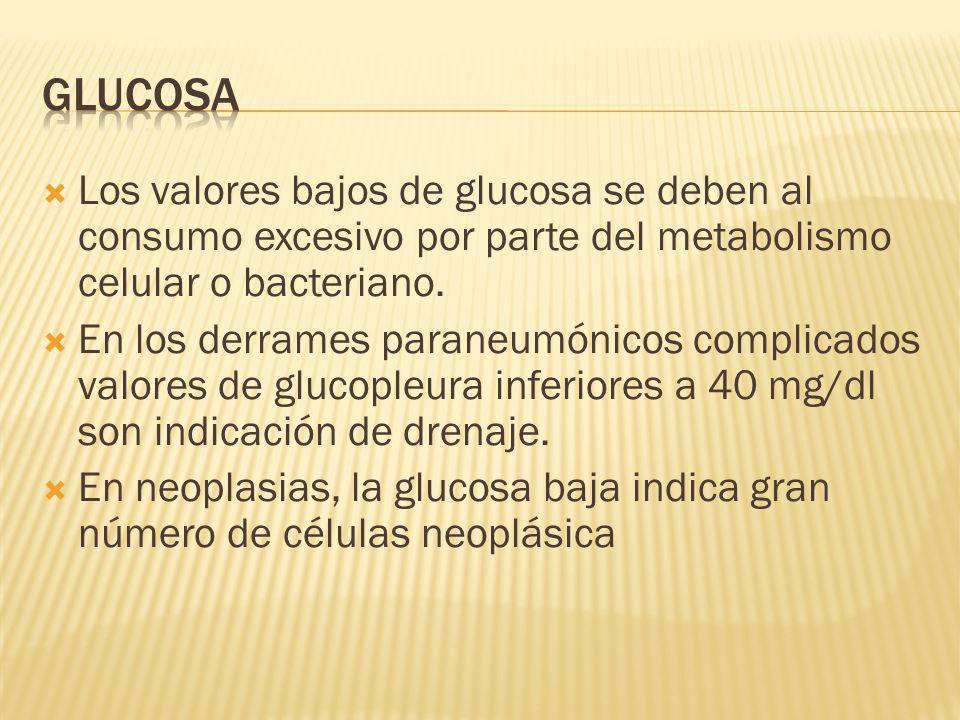 GLUCOSA Los valores bajos de glucosa se deben al consumo excesivo por parte del metabolismo celular o bacteriano.