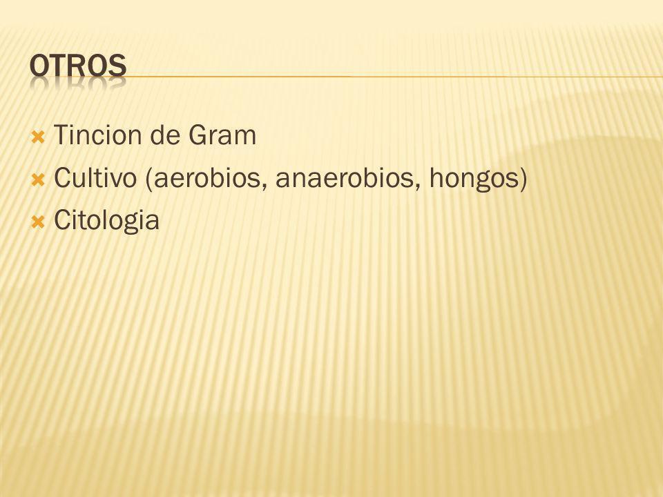 OTROS Tincion de Gram Cultivo (aerobios, anaerobios, hongos) Citologia