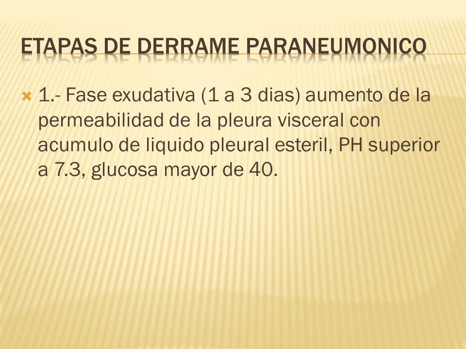 Etapas de derrame paraneumonico