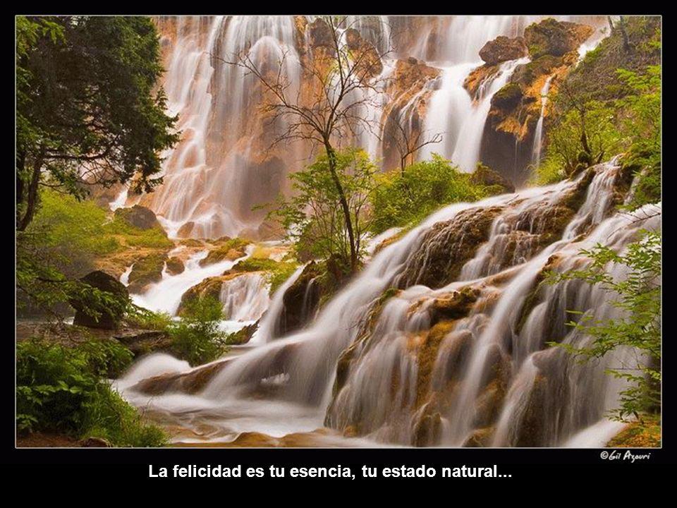 La felicidad es tu esencia, tu estado natural...
