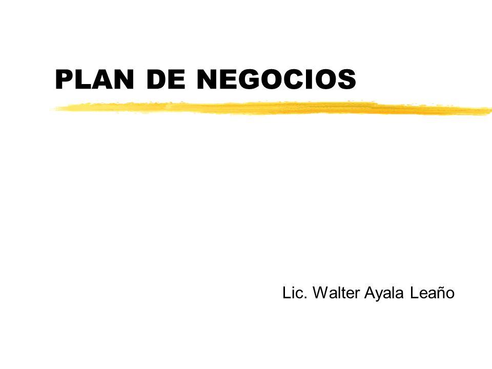 PLAN DE NEGOCIOS Lic. Walter Ayala Leaño