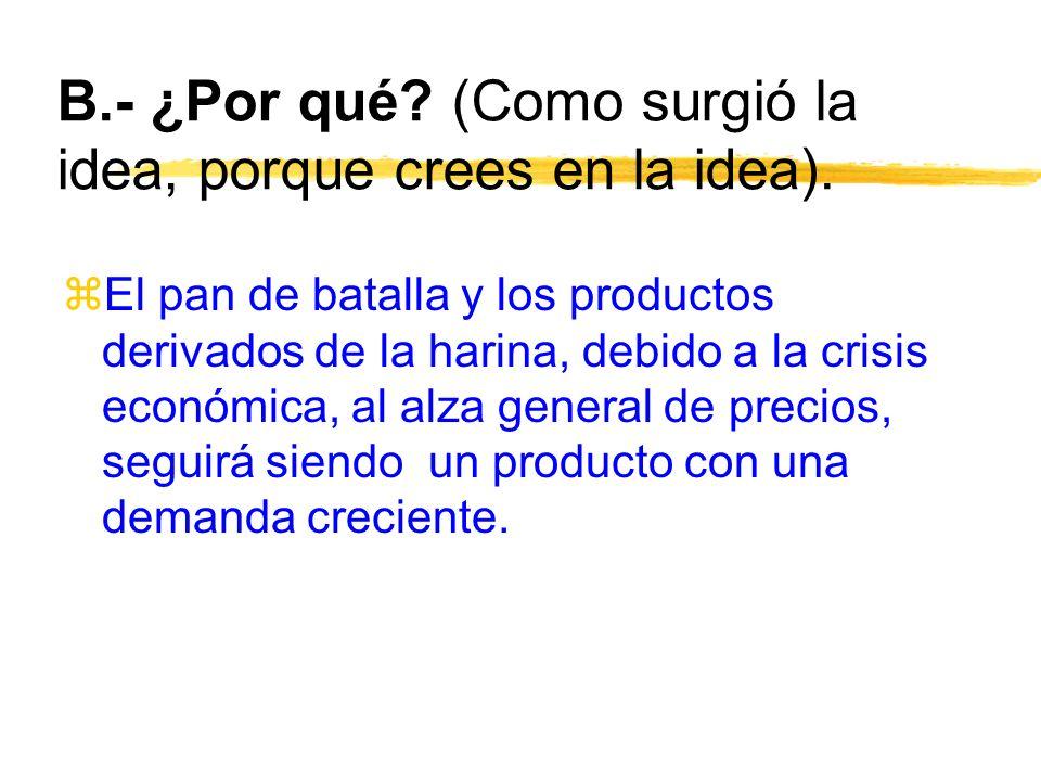 B.- ¿Por qué (Como surgió la idea, porque crees en la idea).