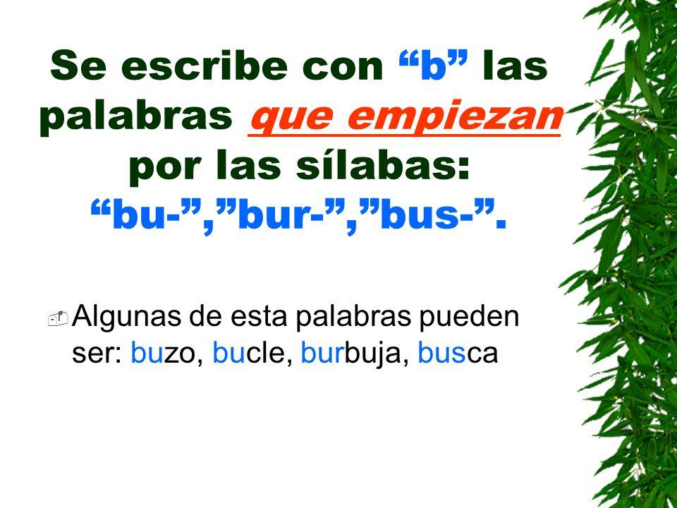 Se escribe con b las palabras que empiezan por las sílabas: bu- , bur- , bus- .