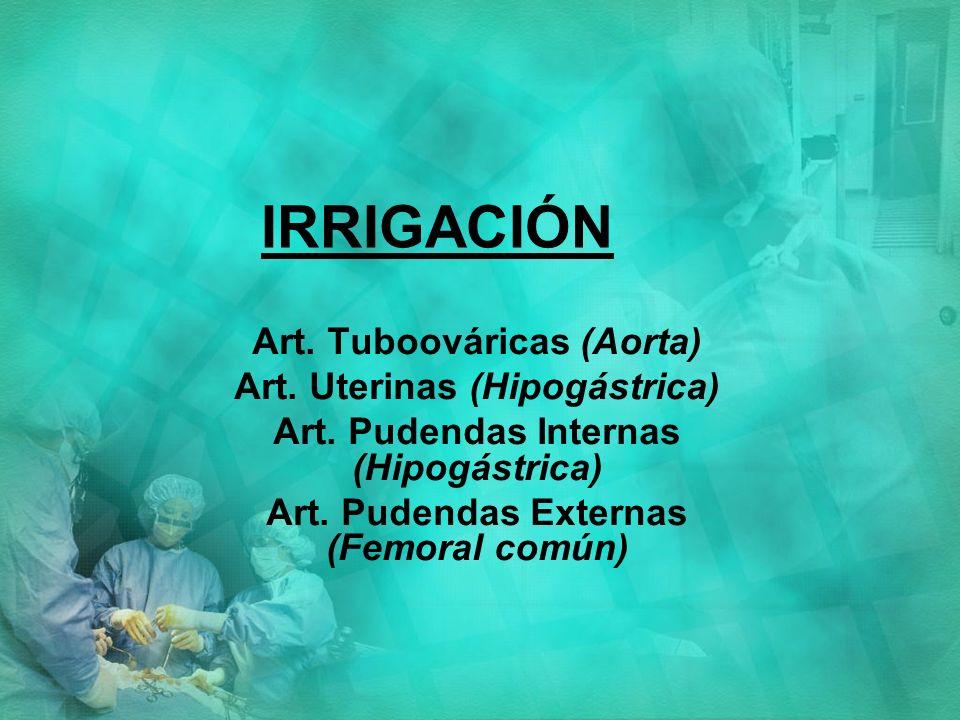 IRRIGACIÓN Art. Tuboováricas (Aorta) Art. Uterinas (Hipogástrica)