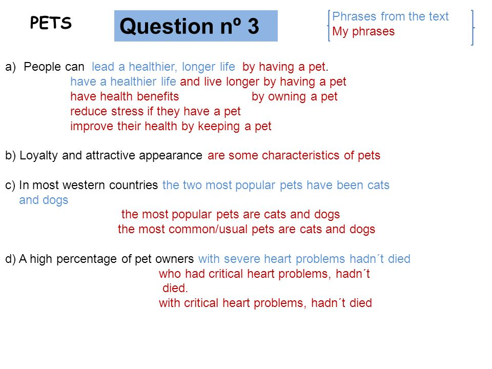 Question nº 3 PETS Phrases from the text My phrases