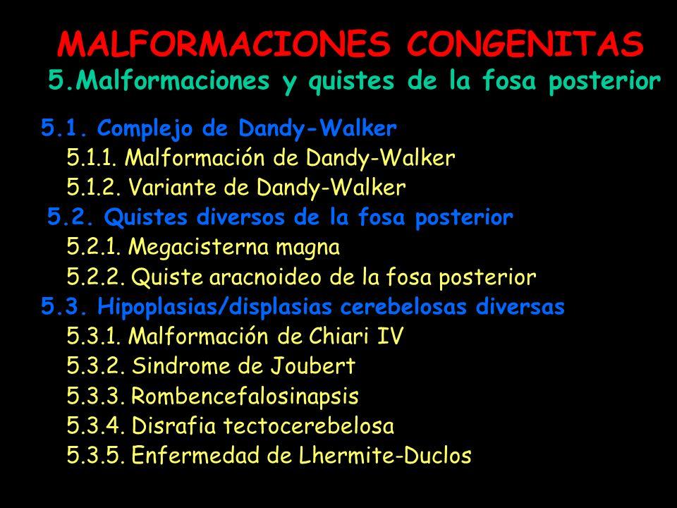MALFORMACIONES CONGENITAS 5