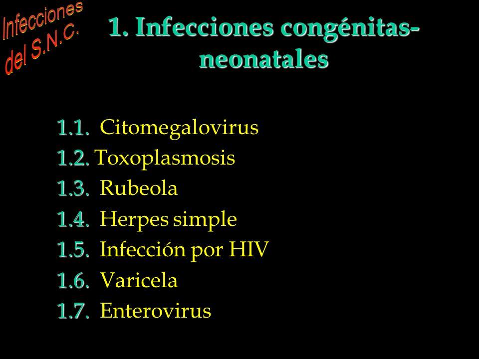 1. Infecciones congénitas-neonatales