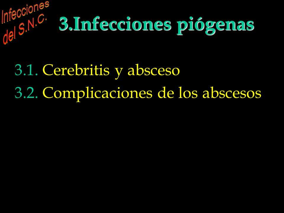 INFECCIONES DEL S.N.C. 3.Infecciones piógenas parenquimatosas