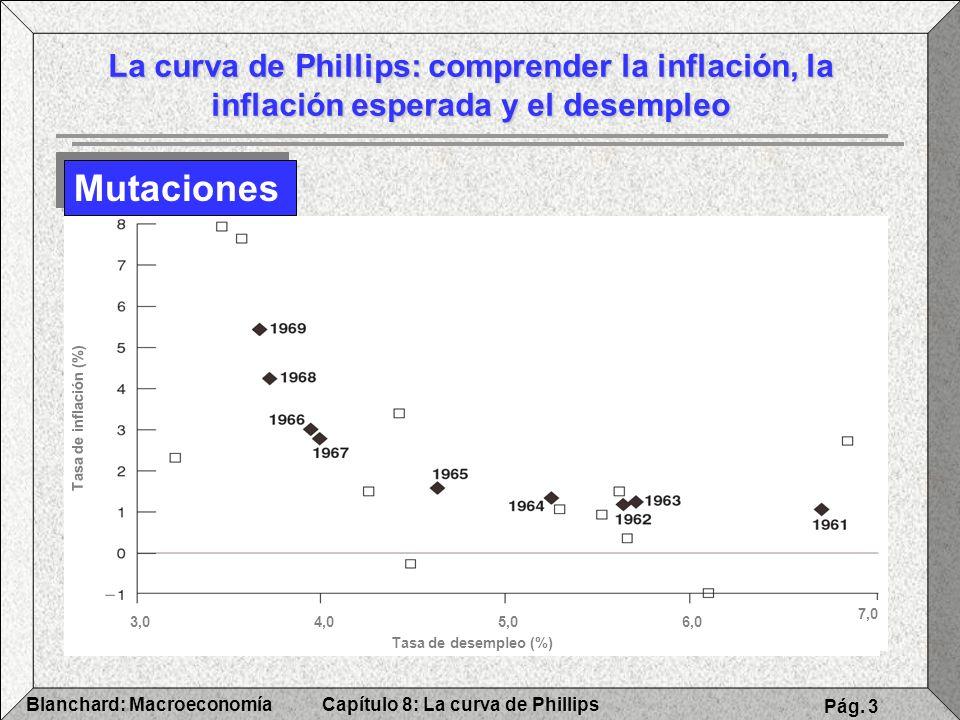 La curva de Phillips: comprender la inflación, la inflación esperada y el desempleo