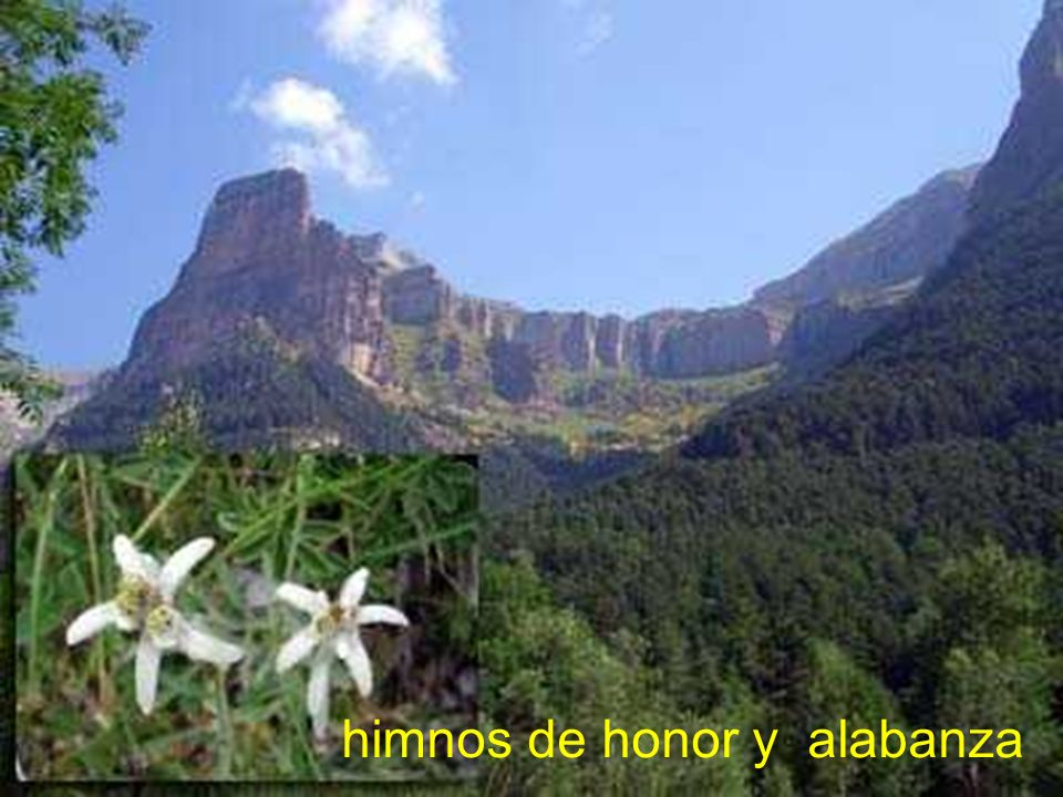 himnos de honor y alabanza