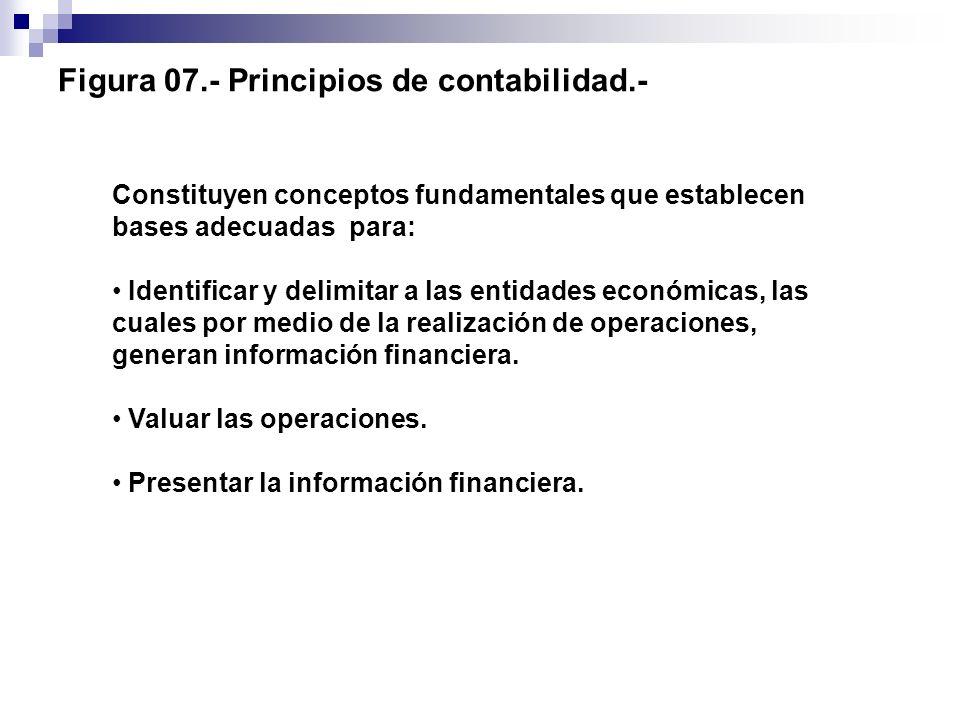 Figura 07.- Principios de contabilidad.-