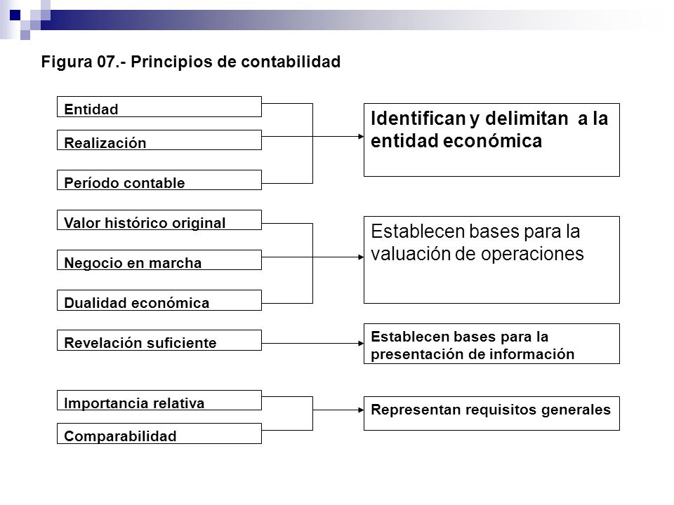 Figura 07.- Principios de contabilidad