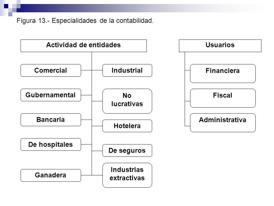 Figura 13.- Especialidades de la contabilidad.