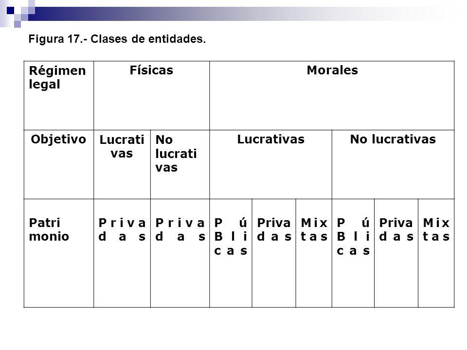 Figura 17.- Clases de entidades.