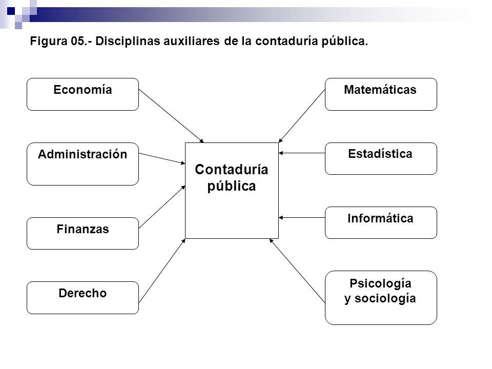 Figura 05.- Disciplinas auxiliares de la contaduría pública.