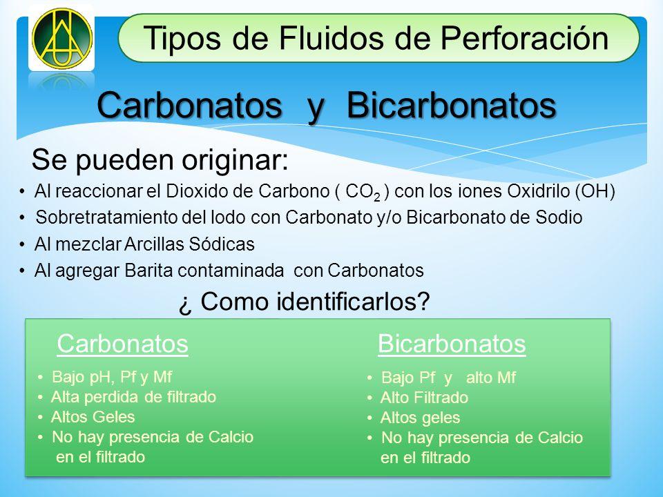 Carbonatos y Bicarbonatos