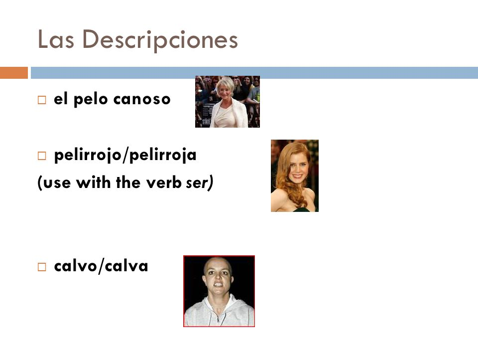 Las Descripciones el pelo canoso pelirrojo/pelirroja