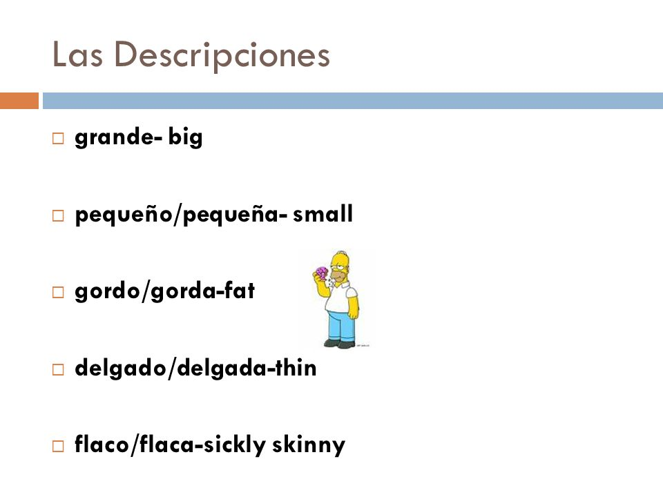 Las Descripciones grande- big pequeño/pequeña- small gordo/gorda-fat