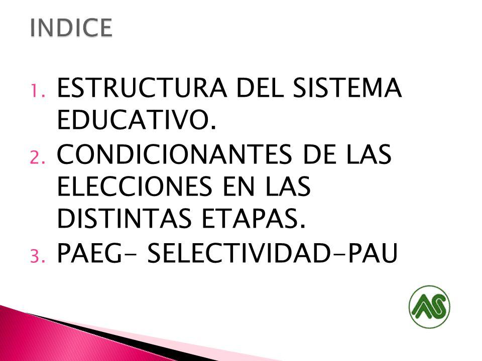 ESTRUCTURA DEL SISTEMA EDUCATIVO.