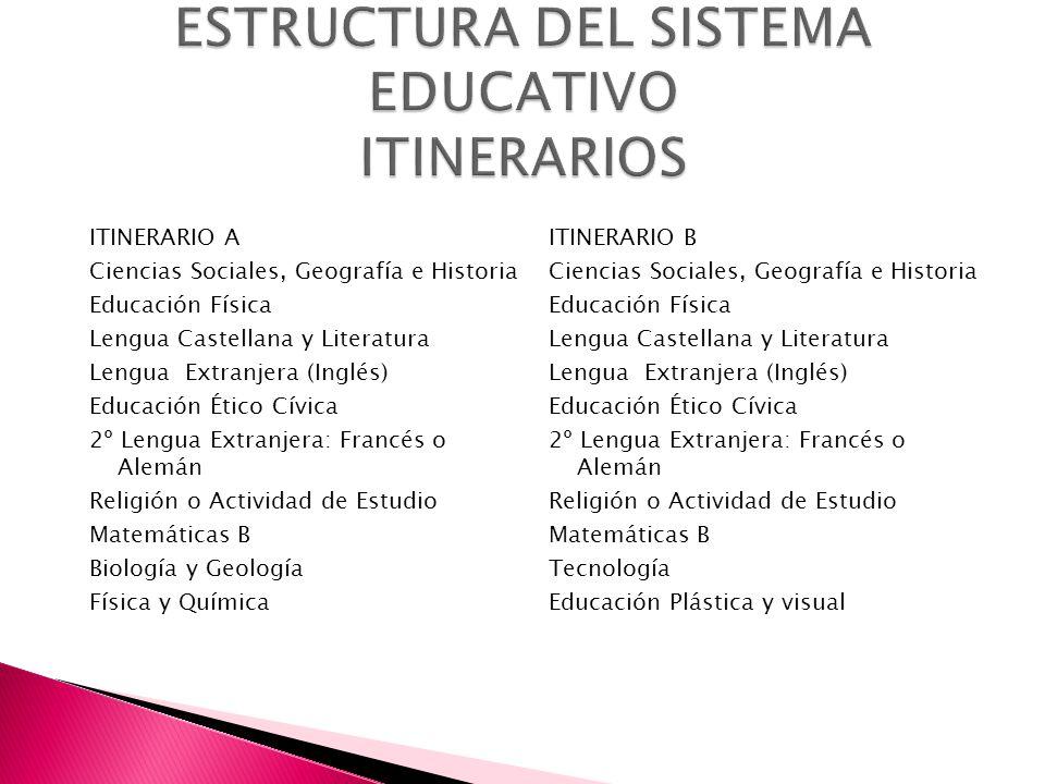 ESTRUCTURA DEL SISTEMA EDUCATIVO ITINERARIOS
