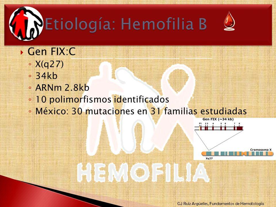 Etiología: Hemofilia B