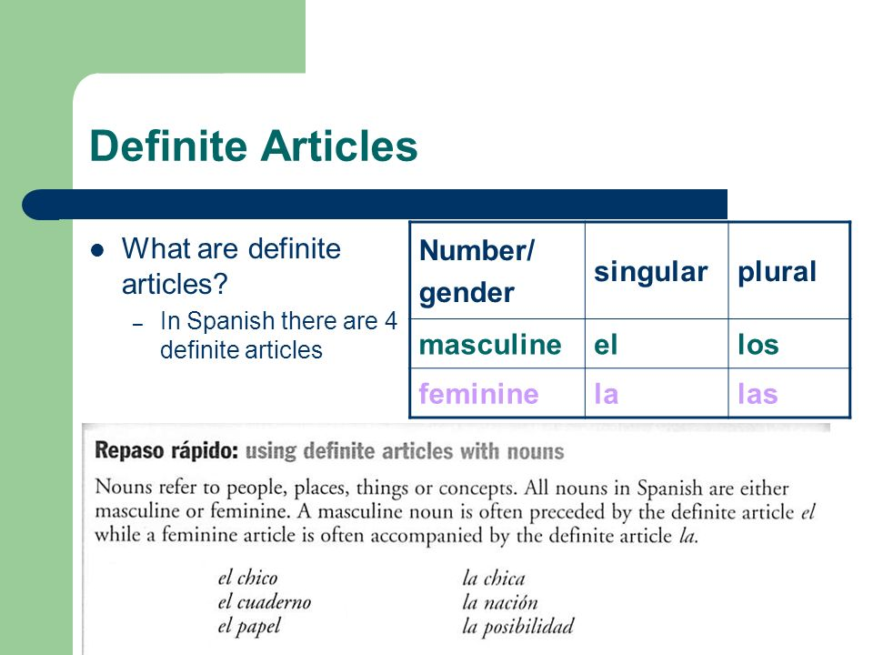 Definite Articles What are definite articles Number/ gender singular