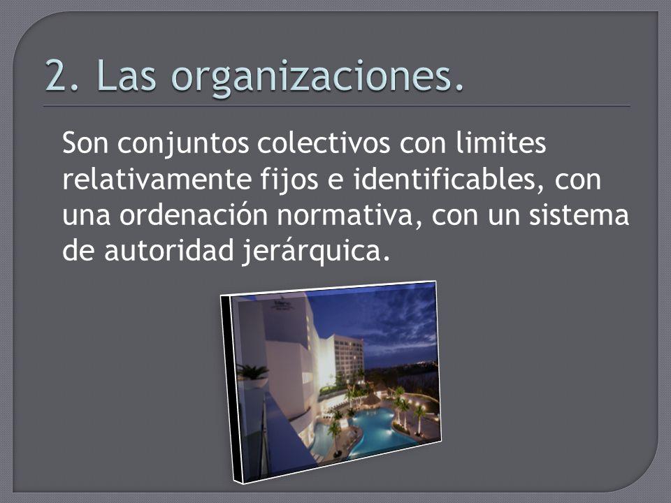 2. Las organizaciones.