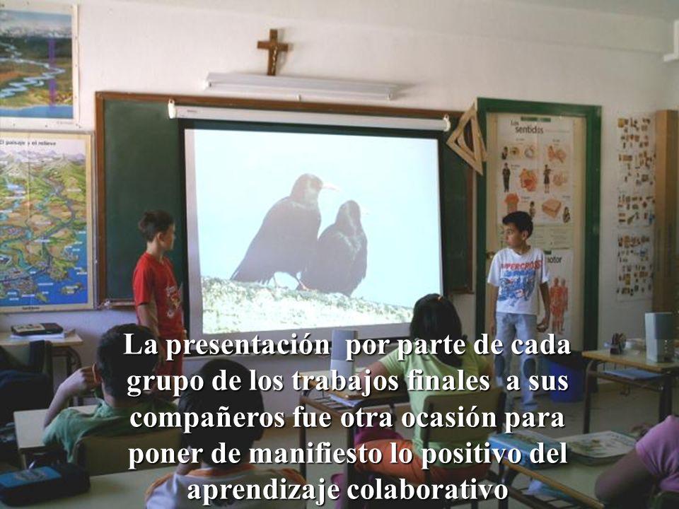 La presentación por parte de cada grupo de los trabajos finales a sus compañeros fue otra ocasión para poner de manifiesto lo positivo del aprendizaje colaborativo