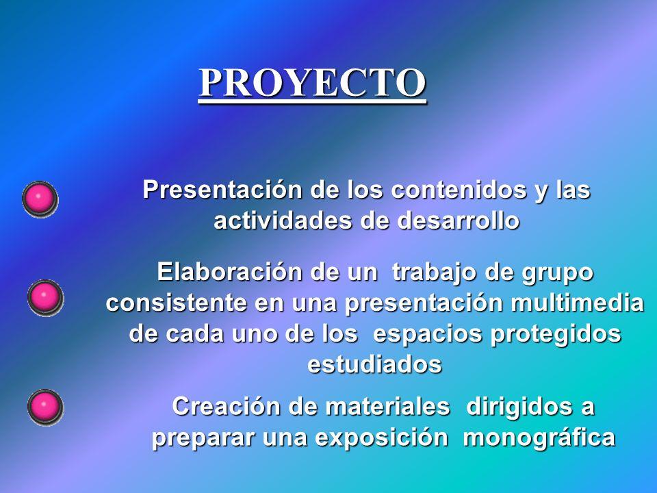 PROYECTO Presentación de los contenidos y las actividades de desarrollo.